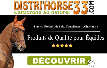 DISTRI'HORSE 33