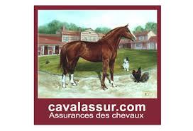 CAVALASSUR