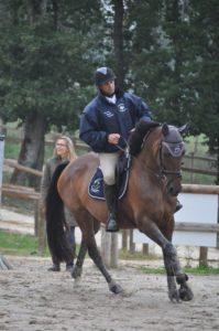Moniteur d'équitation indépendant – Racinet Daniel