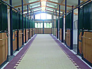 MD STABLES