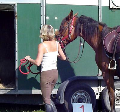 transporter-son-cheval