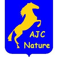 logo AJC
