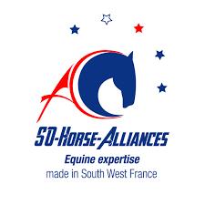 So-Horse-Alliances