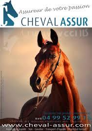 Cheval Assur