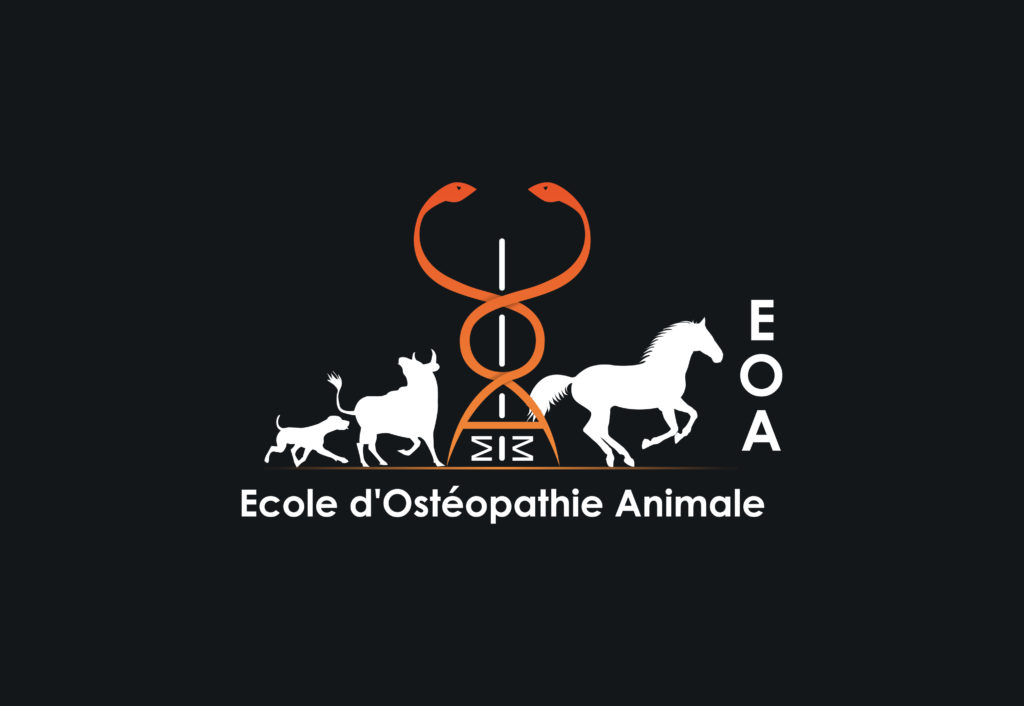 Ecole d'ostéopathie animale (EOA)