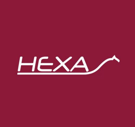HEXA Horse