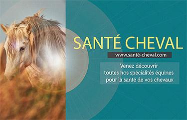 sante-cheval-375