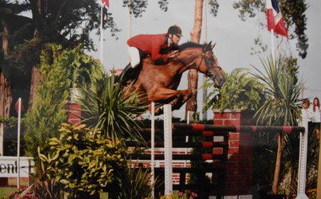 equitation-et-cso