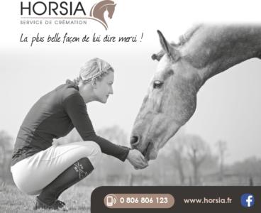 La société horsia