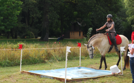 discipline-cheval