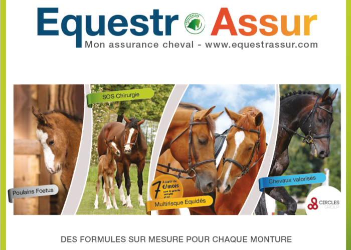 assurance-cheval