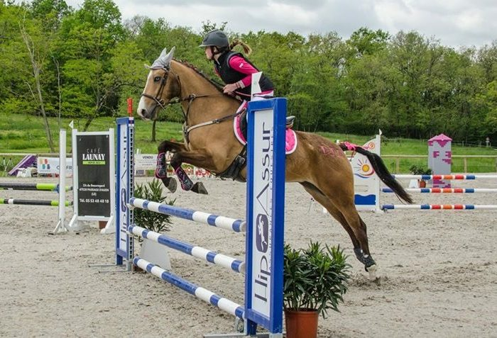 hipassur-assurance-cheval