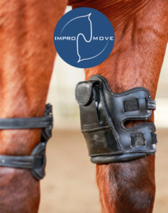 guetres-cheval-impromove