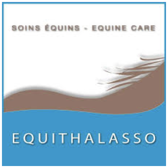 equiphysio EQUITHALASSO