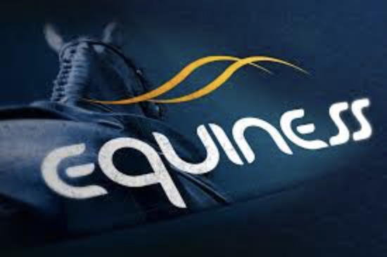 EQUINESS