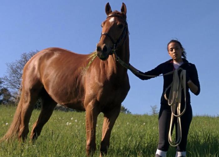 la-myopathie-atypique-du-cheval