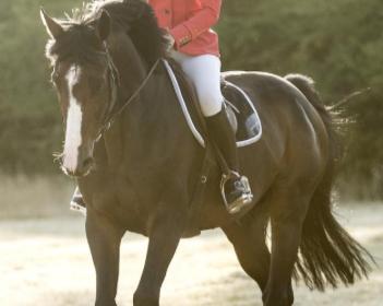 Cavalière en horse pilot