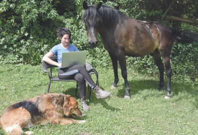 cheval partenaire