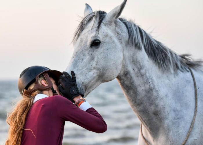 Horsia et l'incinération du cheval