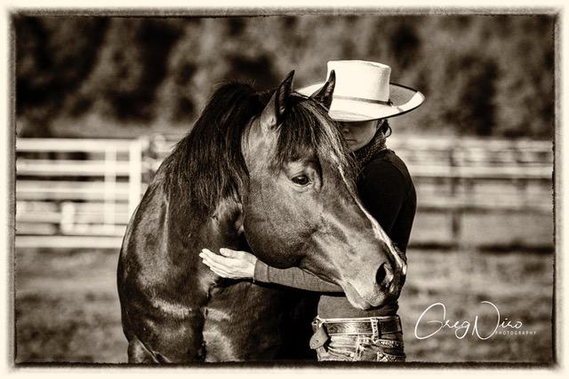 horsemaship image