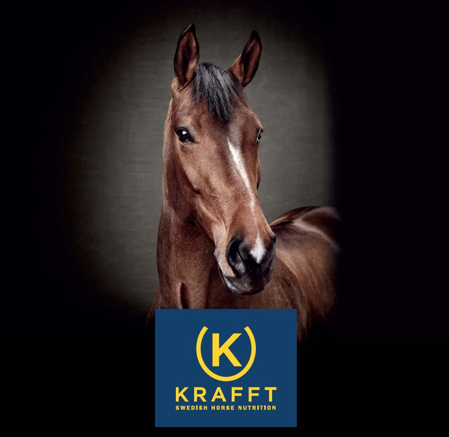L'alimentation du cheval avec Krafft
