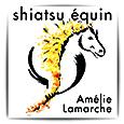 Le shiatsu équin avec Amelie Lamarche