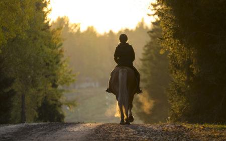 Balade à cheval en automne