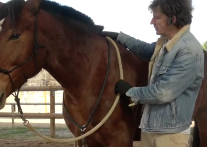 Renaud Subra et la cession des hanches du cheval