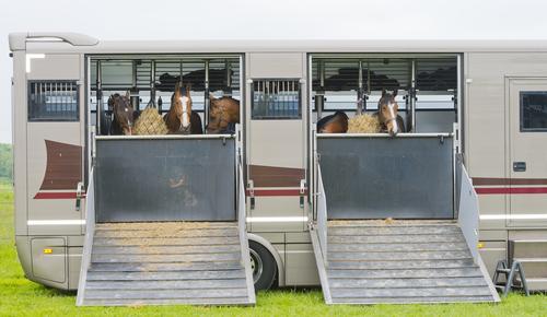 Les vans pour chevaux