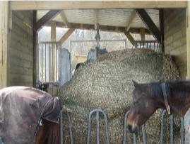 Le foin sous filet pour le cheval