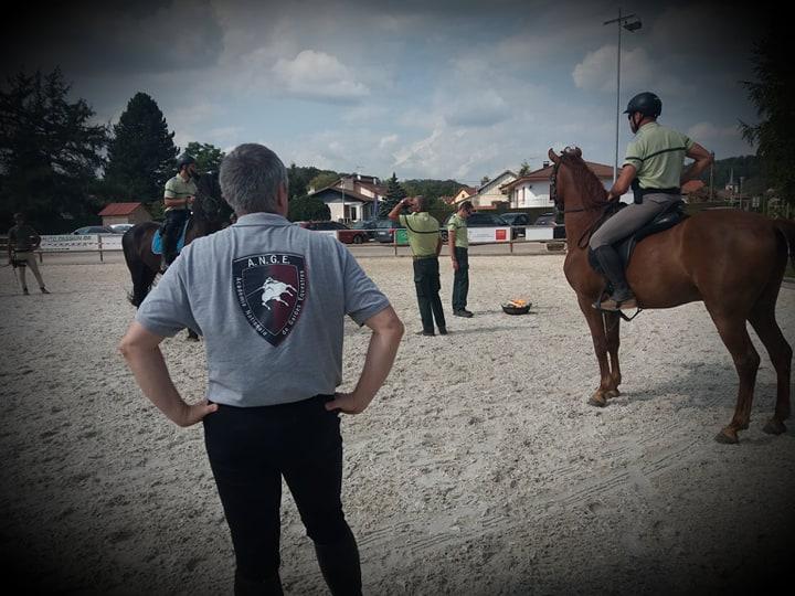Formation de Gardes Equestres
