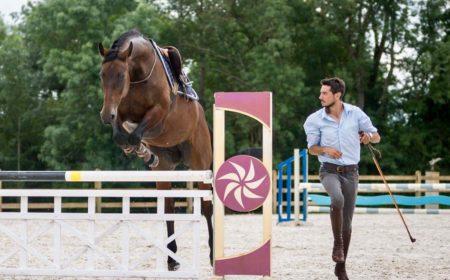 Eduquer son cheval avec Andy Booth