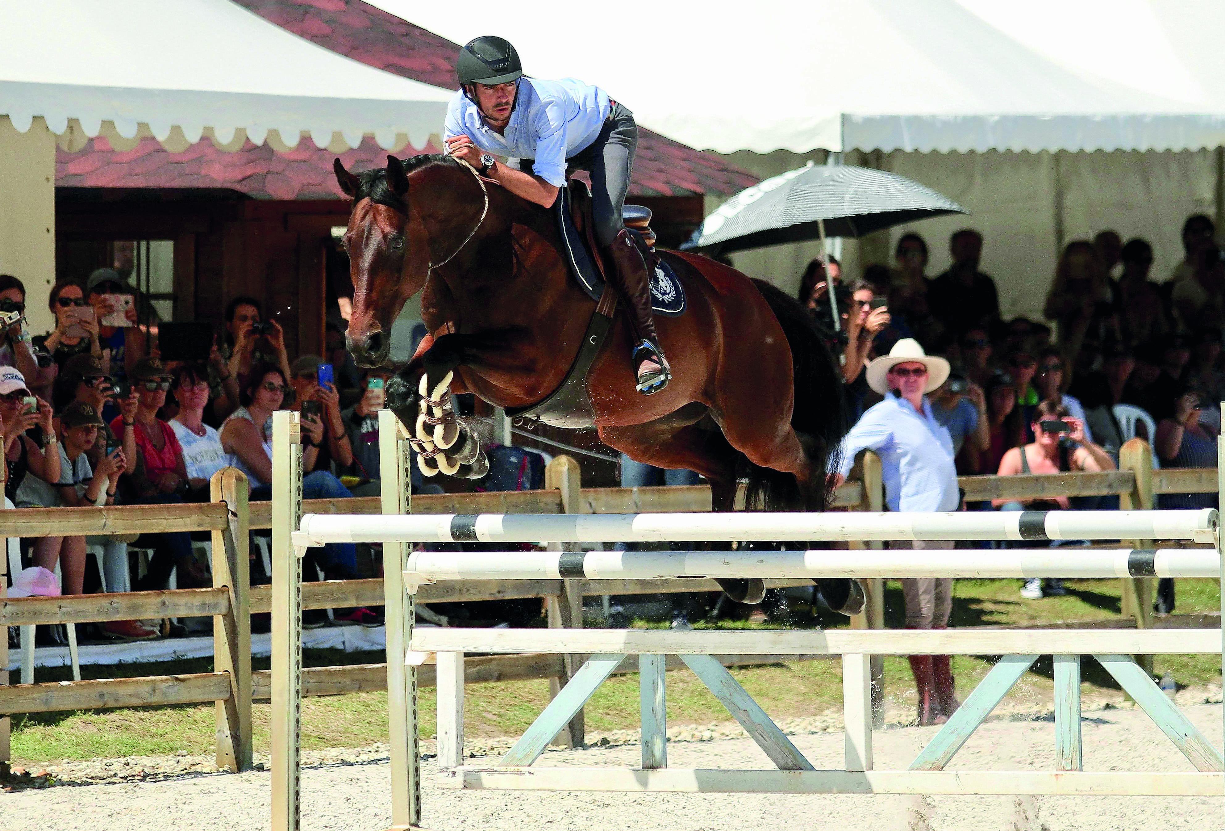 Le saut du cheval