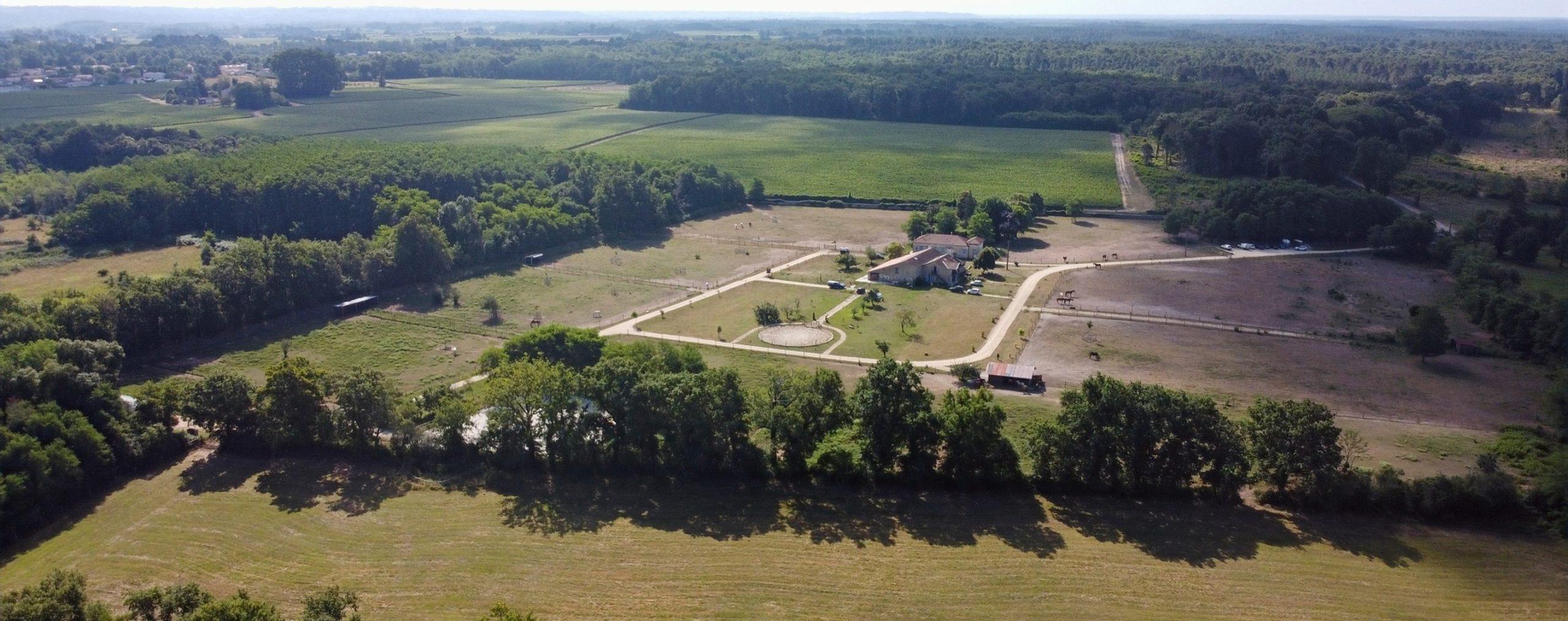 Domaine du Plantey – Elevage de chevaux de sport