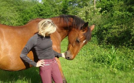 Les tenues d'équitation Horse Pilot