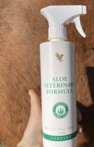 L'aloe vera pour le cheval