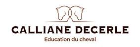 Le logo de Calliane DECERLE